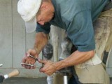 Loren Warner, Santa Clarita, CA Farrier - clinching nails